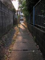 20050618
