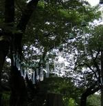 20060723_2