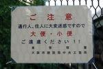 201008046_3