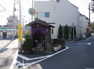 20111029pine